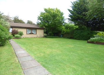 Thumbnail 2 bed bungalow to rent in Nevendon Road, Basildon
