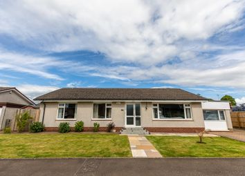 Thumbnail 3 bed bungalow for sale in Abbey Gardens, Coupar Angus