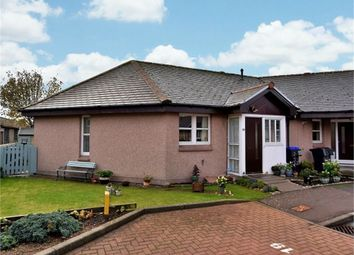 Thumbnail 2 bed terraced bungalow for sale in Garvock Court, Laurencekirk, Aberdeenshire