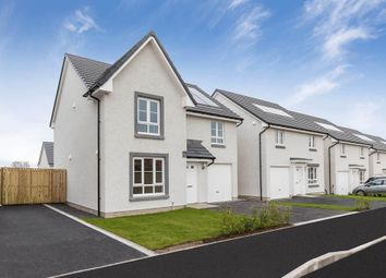 "Thumbnail 4 bedroom detached house for sale in ""Dunbar"" at Charolais Lane, Huntingtower, Perth"