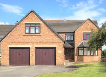 Thumbnail 5 bed detached house for sale in Netherfield Close, Summer Grove, Hensingham, Whitehaven