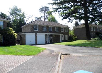 Thumbnail 4 bed detached house to rent in Redcourt, Pyrford, Woking, Surrey