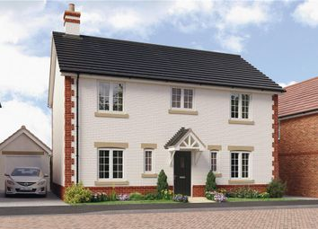 "Thumbnail 4 bedroom detached house for sale in ""Stevenson"" at Anstey Road, Alton"