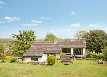 Thumbnail 4 bed detached house to rent in High Street, Spetisbury, Blandford Forum, Dorset