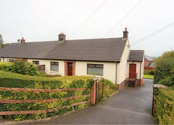 Thumbnail 3 bed semi-detached bungalow for sale in Bernice Road, Newtownabbey