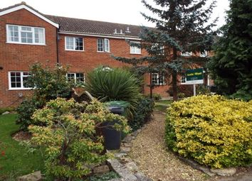 Thumbnail 2 bed terraced house to rent in Pennington Close, Colden Common, Winchester