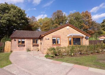 Thumbnail 4 bed bungalow for sale in Hill Rise, Romiley, Stockport, Cheshire