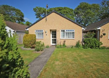 3 bed detached bungalow for sale in Thetchers Close, New Milton BH25