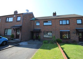 Thumbnail 3 bed terraced house for sale in Edgewater, Lisburn