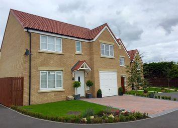 "Thumbnail 4 bed detached house for sale in ""The Winster"" at The Middles, Stanley"