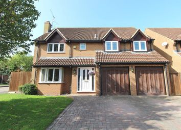 Thumbnail 5 bed detached house for sale in Pyotts Copse, Old Basing, Basingstoke