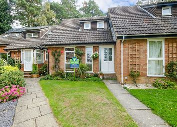 Thumbnail 2 bed terraced house for sale in Batchelors, Pembury, Tunbridge Wells