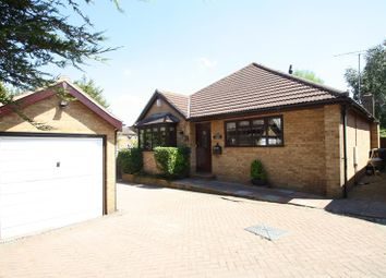 Thumbnail 3 bed detached bungalow for sale in Queen Annes Mews, Westcliff-On-Sea