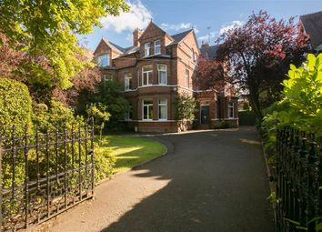 Thumbnail 7 bed detached house for sale in 39, Adelaide Park, Belfast