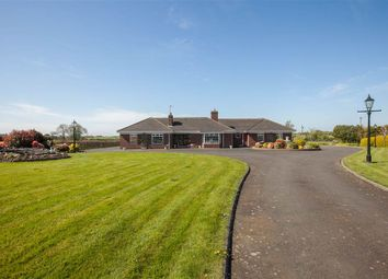Thumbnail 3 bed detached house for sale in 16, Cardy Road, Newtownards