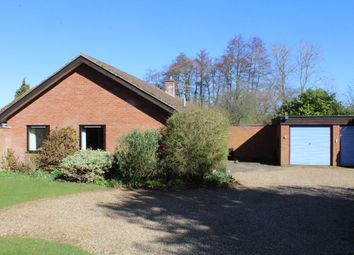 Thumbnail 3 bed bungalow to rent in Church Lane, Ufford, Woodbridge