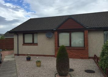 Thumbnail 2 bed semi-detached bungalow to rent in Mcfarlane Croft, Letham, Forfar
