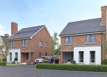 Thumbnail 4 bedroom detached house for sale in Hanover Hill Gardens, Hanover Hill, Bangor