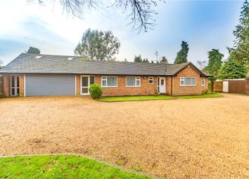 4 bed bungalow for sale in Ashdene Road, Ash, Surrey GU12