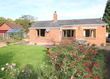 Thumbnail 2 bed detached bungalow for sale in The Bungalow, Brampton Abbotts, Ross-On-Wye