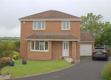 Thumbnail 3 bed detached house for sale in Meadow Lands, Tweedmouth, Berwick-Upon-Tweed