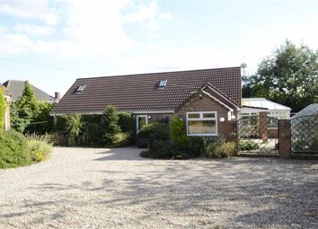 Thumbnail 3 bed detached bungalow for sale in The Common, South Normanton, Alfreton