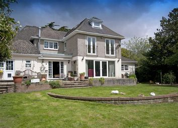 Thumbnail 6 bed detached house for sale in Higher Lane, Swansea, Swansea