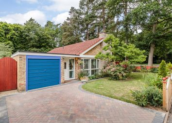 Thumbnail 3 bedroom detached bungalow for sale in Woodlands Way, Bury Saint Edmunds, Suffolk