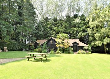 Thumbnail 3 bed detached bungalow for sale in Aylmerton, Norwich