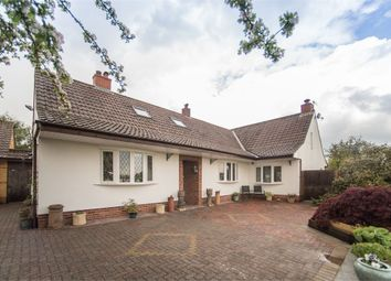 Thumbnail 3 bed detached house for sale in Isleport Lane, Highbridge, Somerset