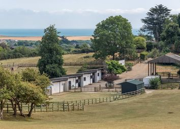 Thumbnail 2 bed equestrian property for sale in Gaggerhill Lane, Brighstone, Newport