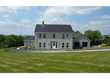 Thumbnail 4 bed detached house for sale in Ballysallagh Road, Dromore