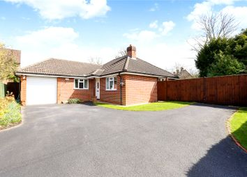 Thumbnail 3 bed detached bungalow for sale in Stonehouse Road, Liphook, Hampshire