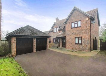 Thumbnail 4 bed detached house for sale in Great Leighs Way, Basildon, Essex