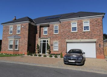 Thumbnail 5 bed detached house for sale in Danegeld Garth, Welton, Brough
