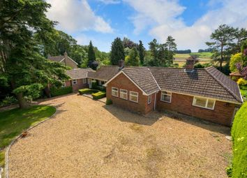 Thumbnail 4 bed detached bungalow for sale in Rectory Lane, Harlaxton, Grantham
