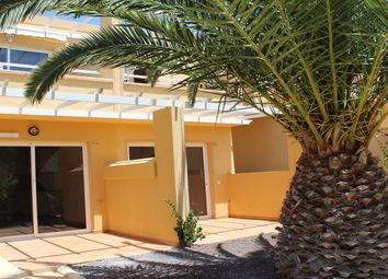 Thumbnail 1 bed apartment for sale in Costa Calma, Fuerteventura, Spain