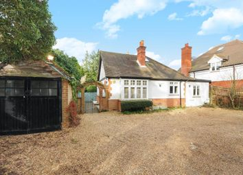 Thumbnail 3 bed detached bungalow to rent in Locks Ride, Ascot