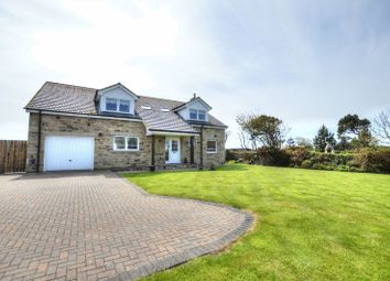 Thumbnail 4 bed detached house for sale in St. Aidans, Seahouses