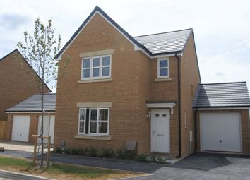 Thumbnail 3 bed detached house to rent in Jockey Way, Andover