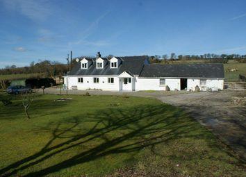 Thumbnail 4 bed farmhouse for sale in Bwlychygroes, Llandysul
