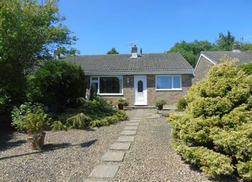 Thumbnail 2 bedroom semi-detached bungalow for sale in Pennant Road, Swiss Valley, Llanelli