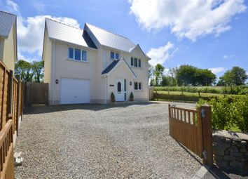 Thumbnail 3 bed detached house for sale in Blaenffos, Boncath