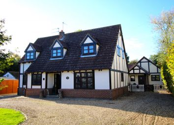 Thumbnail 4 bed detached house for sale in Broadgate, Spalding