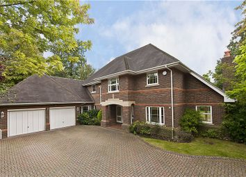 Thumbnail 5 bedroom detached house to rent in Blue Cedars Place, Cobham, Surrey