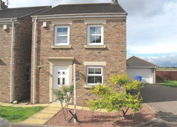 Thumbnail 4 bed detached house to rent in Aysgarth, East Hartford, Cramlington
