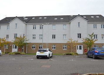 Thumbnail 2 bed flat for sale in G71
