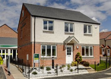 "Thumbnail 4 bed detached house for sale in ""The Ettrick "" at East Baldridge Drive, Dunfermline"