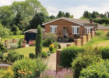 Thumbnail 4 bed detached bungalow for sale in Thrintoft, Northallerton