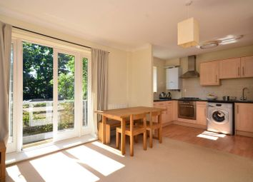 Thumbnail 2 bed flat to rent in Blenheim Grove, Peckham Rye